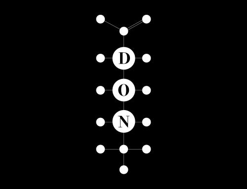 Video over baanbrekend onderzoek voor Stichting DON